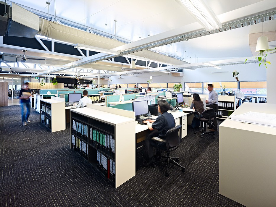 green sustainable office fitout with living plant features