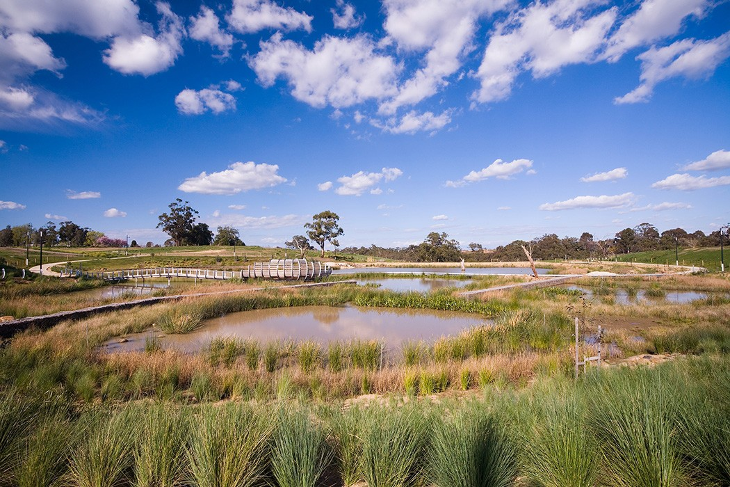 wetlands in Bundoora with walkways, bridge