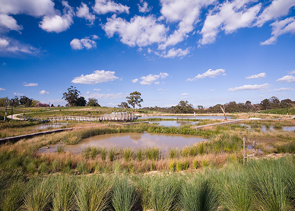 wetlands in Bundoora with walkways, bridge