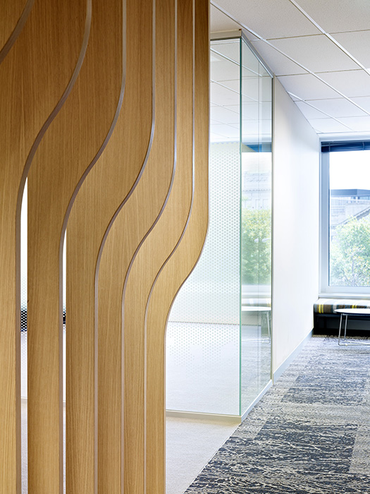 Office fitout with timber ceiling blades