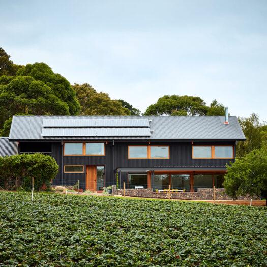 Main Ridge Barn view of dark house across strawberry field - building photographer example / concept