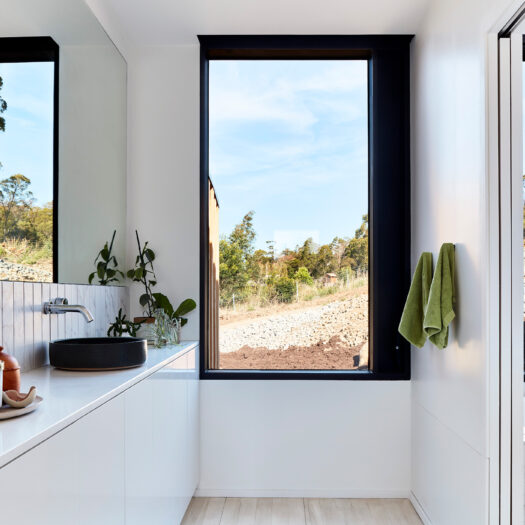 bathroom with mirror and plants / hand towels - building photographer example / concept